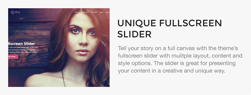 Story - Creative Responsive Multi-Purpose Theme - 19